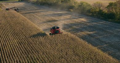 China comprará menos produtos agrícolas do Brasil em 2020, diz economista