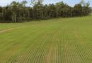 Governo quer mudar seguro agropecuário