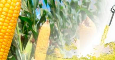 Grupo de investidores anuncia construção de usina de etanol de milho avaliada em quase meio bilhão