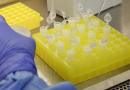 China aprova início de testes de vacinas experimentais contra Covid-19