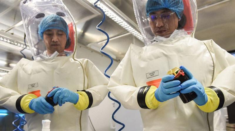 Novo coronavírus foi fabricado em laboratório chinês