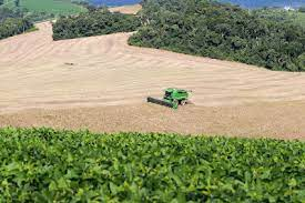 PR: Estado deve produzir 40,6 milhões de toneladas de grãos