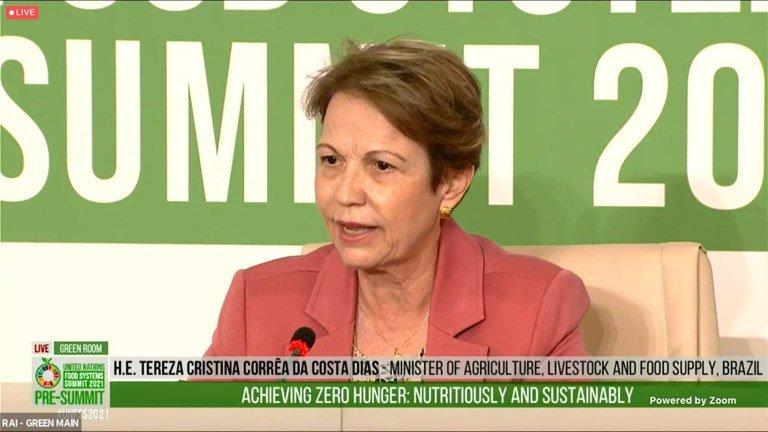 'Na pré cúpula dos Sistemas Alimentares, ministra da Agricultura fez o que o agro esperava dela'